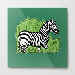 Zebra Walking Through Grass Metal Print