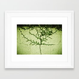 Ivy Wall Framed Art Print
