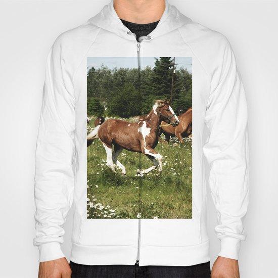 Spring Horse Run Hoody