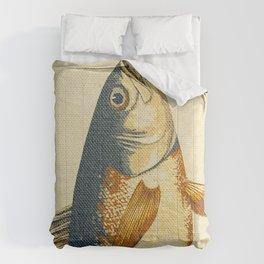 Piscibus 8 Comforters