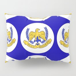 Bleu Raeders Pillow Sham