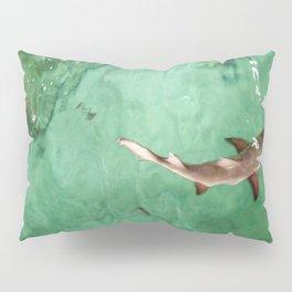 Look at the Shark Pillow Sham