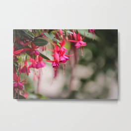 Flower Memories Metal Print