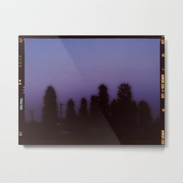 A Wall of Pines Metal Print