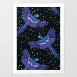 Hyacinth blue macaw parrots on the starry night sky Art Print