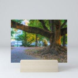 Allentown West Park Path And Tree Mini Art Print