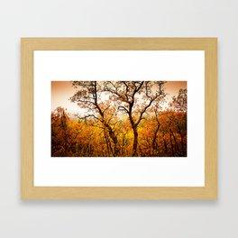 Nature Red Framed Art Print