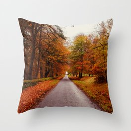 Autumn Road II Throw Pillow