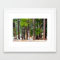 forrest Framed Art Prints featuring Forrest by Savannah Ault