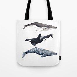 Orca, humpback and grey whales Tote Bag