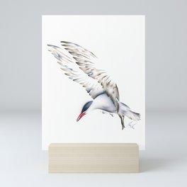 Seagull Mini Art Print