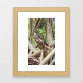 Jesus Lizard Framed Art Print