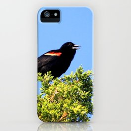 Watercolor Bird, Red-Winged Blackbird 01, Janes Island, Maryland iPhone Case