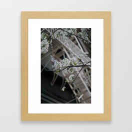 Juxtoposition Framed Art Print