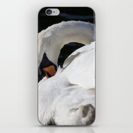 Peaceful Swan iPhone Skin