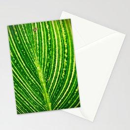 So Close Stationery Cards