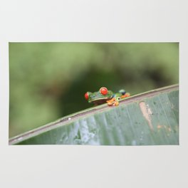 Red eye Frog on leaf Costa Rica Photography Rug