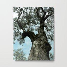 Treefulness Metal Print