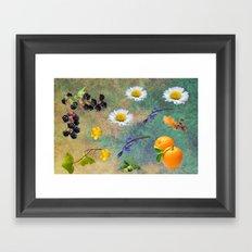 Natures Mix. Framed Art Print