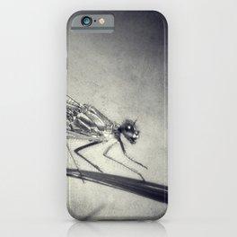 Libelle iPhone Case