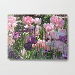 Spring - Tulips Pink Metal Print