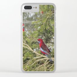 Pair of Crimson Rosellas Clear iPhone Case
