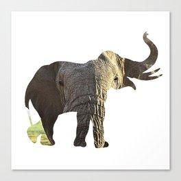 Elephant Cutout 2 Canvas Print