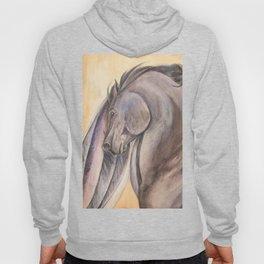 Raven Pegasus Hoody