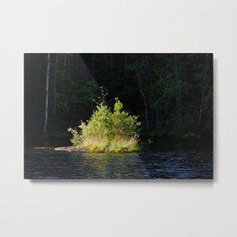 Small lush island in sunlight at lake shore Metal Print