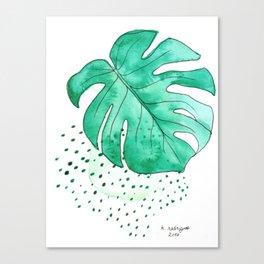 monstera monday Canvas Print