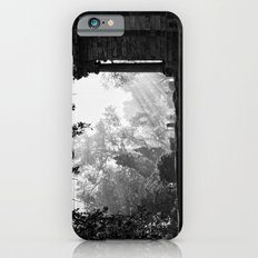 Morning at greenlawn iPhone 6s Slim Case