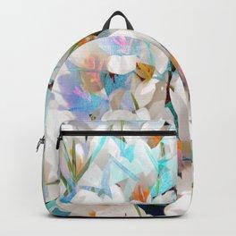 Decor ######## Backpack