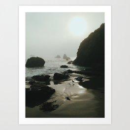 Bird on Foggy Beach Art Print