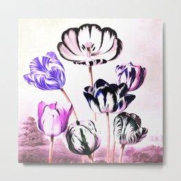 Lavender Mauve Tulips : Temple of Flora Metal Print