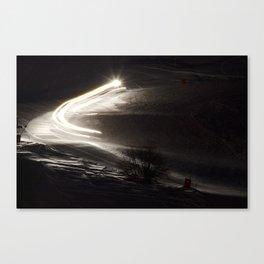 TL0011 Canvas Print
