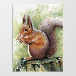 Squirrel and Nut Forest Animals Watercolor Poster