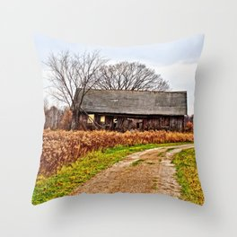 Wisconsin Old Barn 2 Throw Pillow