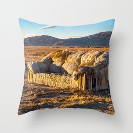Sitting comfortably Throw Pillow