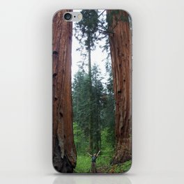 Sam and the Sequoias iPhone Skin