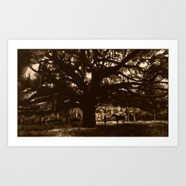 Meeting under the great tree Art Print