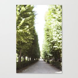 The Garden Paths in France Canvas Print
