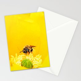 Cactus Flower, Bee and Grasshopper Stationery Cards