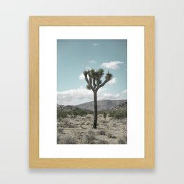 Joshua Tree On A Calm Cool Day Framed Art Print