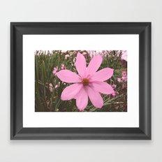 Pretty in Pink Framed Art Print
