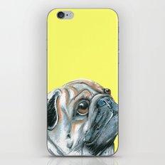 Pug, printed from an original painting by Jiri Bures iPhone & iPod Skin