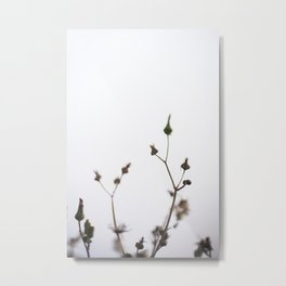 Neutral Fowers Metal Print