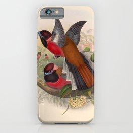 Vintage Birds Of Asia Harpactes Diardi iPhone Case