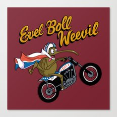 Evel Boll Weevil Canvas Print