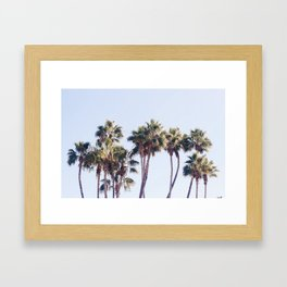 For The Love of Palm Trees Framed Art Print