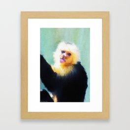 Spunky Little Monkey Framed Art Print